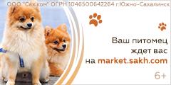 Ваш питомец ждет вас на market.sakh.com