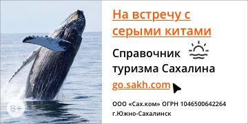 Справочник туризма Сахалина go.sakh.com. На встречу с серыми китами