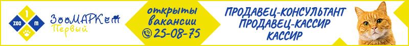 В ЗооМАРКет Первый отрыты вакансии на должность: Продавец-консультант, продавец-кассир, кассир, 25-08-75